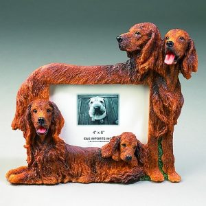 Irish Setter Photo Frame-0