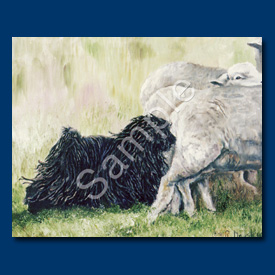 Hungarian Puli - 6 pack Note Cards--0