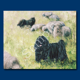 Hungarian Puli - 6 pack Note Cards-0