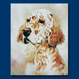 English Setter – 6 pack Note Cards!-0