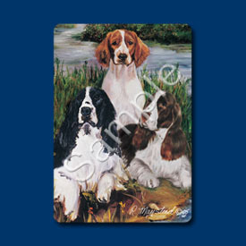Welsh Springer - Deck of Playing Cards-0