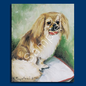 Tibetan Spaniel – 6 pack Note Cards-0