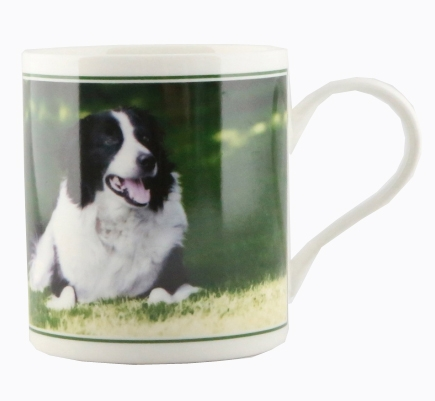 Border Collie China Mug -Boxed-0