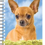 Chihuahua 3D Note Book-0