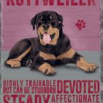 Rottweiler – Hanging Metal Sign-0