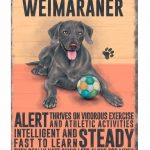 Weimaraner - Hanging Metal Sign-0