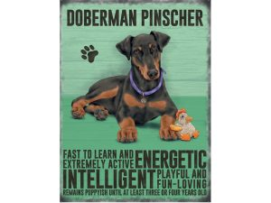 Doberman - Hanging Metal Sign-0