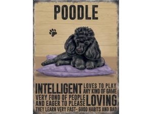 Poodle (black) - Hanging Metal Sign-0
