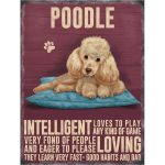 Poodle (apricot) - Hanging Metal Sign-0
