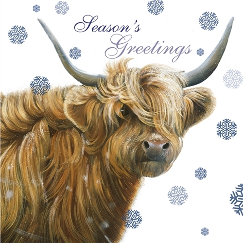 Scottish Highland Cow- Christmas Card-0