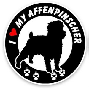 Affenpinscher Round Car Sticker -0