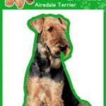Airedale - Air Freshener -0