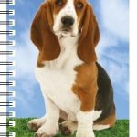 Basset Hound 3D Note Book-0