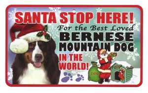 Bernese Mountain Dog Santa Stop Here Sign-0
