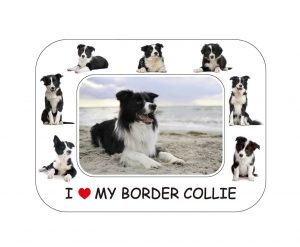 Border Collie Magnetic Photo Frame & Magnet-0