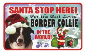 Border Collie Santa Stop Here Sign-0