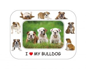 Bulldog Magnetic Photo Frame & Magnet-0