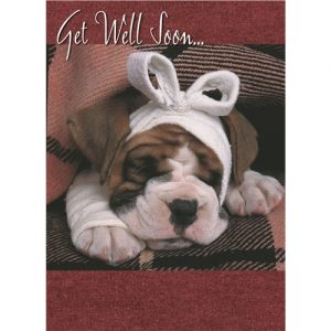 Bulldog- Get Well Card-0