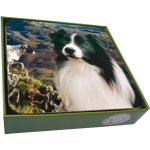 Border Collie Coasters- set of 6-0