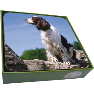 English Springer Spaniel Coasters- set of 6-0