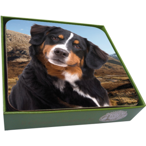 Bernese Mountain Dog Coasters- set of 6-0