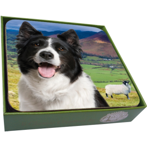 Border Collie Coaster- set of 6-0