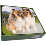 Rough Collie Coasters- set of 6-0