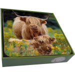 Scottish Highland Cow with Calf Coasters- set of 6-0