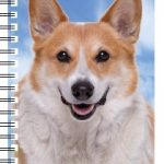 Welsh Corgi 3D Note Book-0