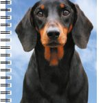 Dachshund (black & tan) 3D Note Book-0
