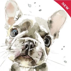 French Bulldog - Blank Card-0