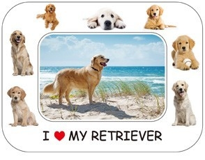 Golden Retriever Magnetic Photo Frame & Magnet-0