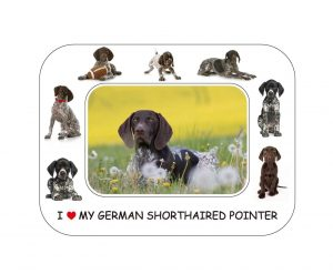 German Shorthaired Pointer Magnetic Photo Frame & Magnet-0