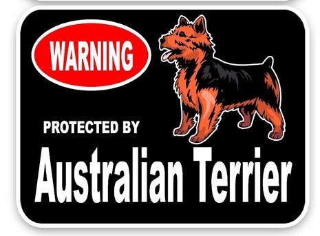 Australian Terrier Car Sticker -0