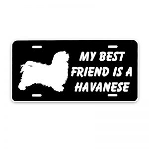 Havanese Car Sticker -0