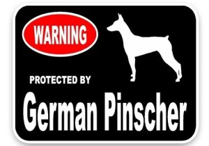 German Pinscher Car Sticker -0