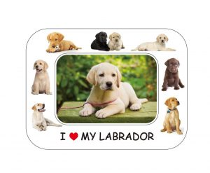 Labrador Magnetic Photo Frame & Magnet-0