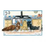 Welsh Springer Spaniel - Blank Card-0
