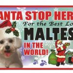Maltese Santa Stop Here Sign-0
