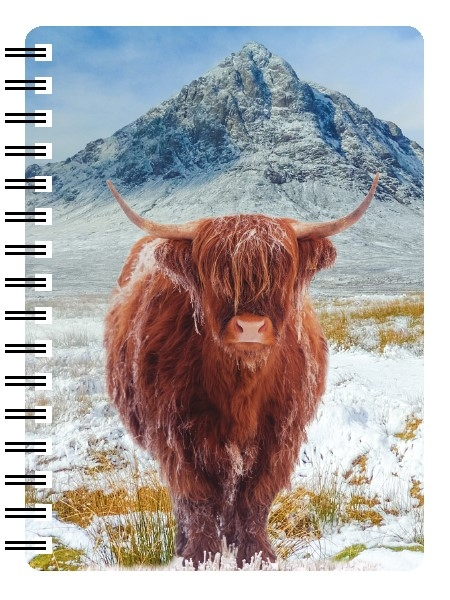 Highland Cow 3D Note Books-0