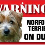 Norfolk Terrier Warning Sign-0