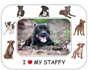 Staffordshire Bull Terrier Magnetic Photo Frame & Magnet-6851