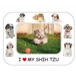 Shih Tzu Magnetic Photo Frame & Magnet-0