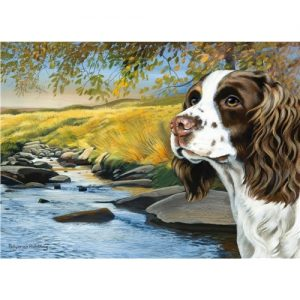 English Springer Spaniel- Blank Card-0