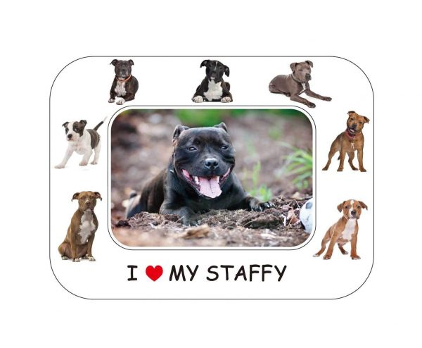 Staffordshire Bull Terrier Magnetic Photo Frame & Magnet-0