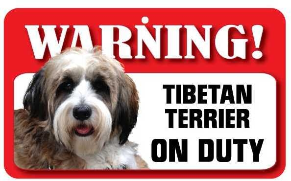 Tibetan Terrier Warning Sign-0