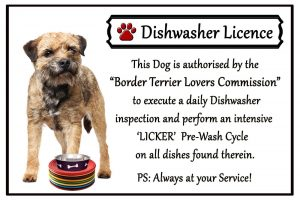 Border Terrier Dishwasher Licence Magnet-0