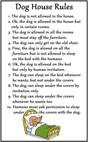 Dog House Rules Magnet-0