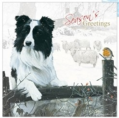 Border Collie - Season's Greetings Christmas Card-0