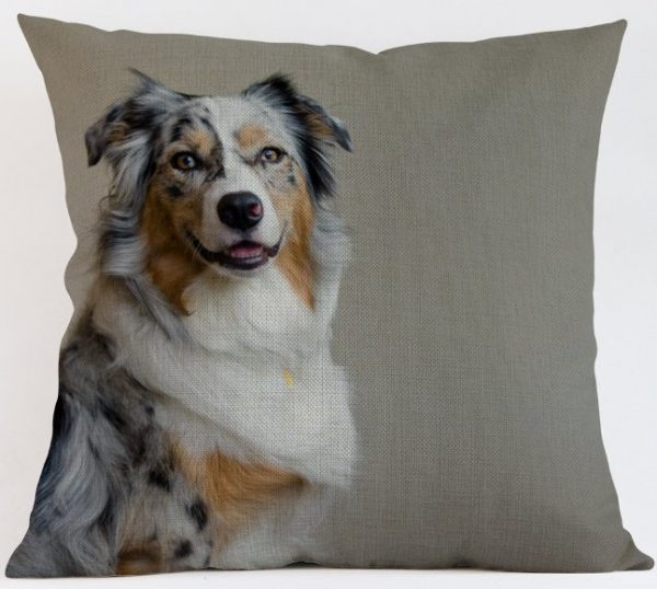 Border Collie Tri Cushion Cover